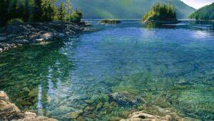Carol Evans Lagoon Cove