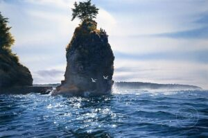 Carol Evans Siwash Rock